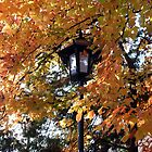 Autumn Lamp by Harlequitmix