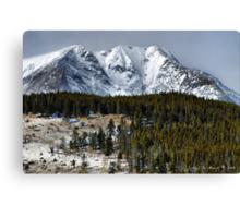 Winter In the Colorado Rockies Canvas Print