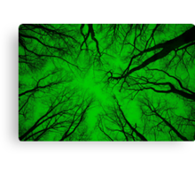 Root or Branch v 06 : Photography by Alys Griffiths Canvas Print
