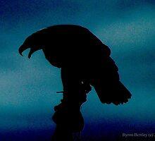 Eagle Silhouette by kingbob85