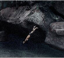The Dive by Wayne King
