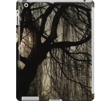 Lacy Curtains iPad Case/Skin