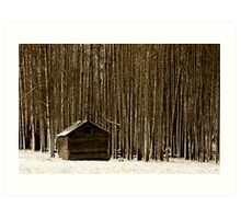 The Woods, Part 2 Art Print
