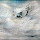 Snowstorm by Sue Abonyi