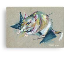 Zelda the rat Canvas Print
