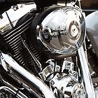 Harley detail by Michael Findlay