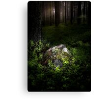 Son of the forest Canvas Print