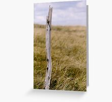 the last one standing... Greeting Card