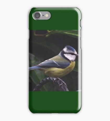Keeping a beady eye on things....Blue tit iPhone Case/Skin
