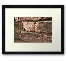 Brick Wall : Photography by Alys Griffiths Framed Print