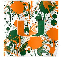 Go Canes! Poster