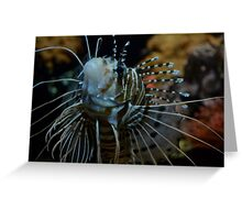 Spotfin Lionfish Greeting Card
