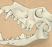 Ancient Canine Skull by Ross Jones
