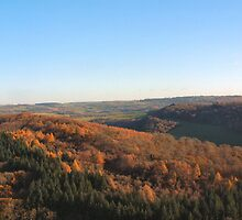 Autumn in the Valley by Mischa