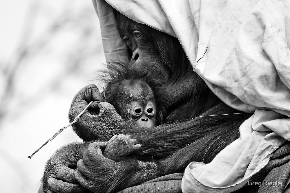 Loving Mother by Greg Riegler