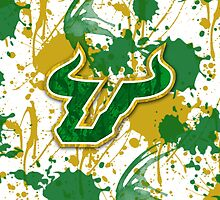 Go Bulls! by Lindsey Reese