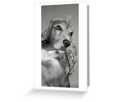 CANDY b&w Greeting Card
