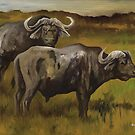 Old Bulls - Cape Buffalo by John Houle