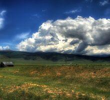 Colorado Farm by Scott Ingram