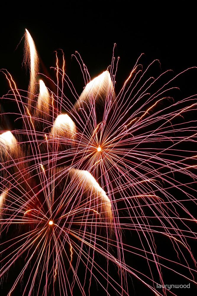 Fireworks 4 by laurynwood