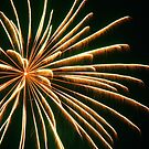 Fireworks 1 by laurynwood