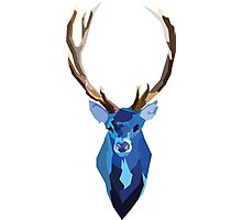 Blue Stag (White) Photographic Print