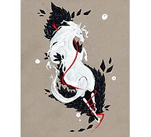 HORSE RIBBONS Photographic Print