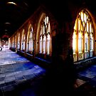 Chichester Cathedral Cloisters by mikebov