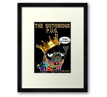notorious pug Framed Print