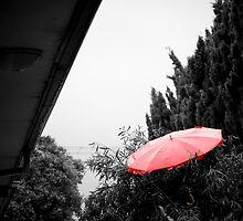 Where I keep my umbrella by Marnie Hibbert