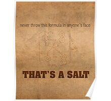 Never Throw This Formula in Anyones Face Thats a Salt Humor Poster Poster