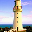 Cape Otway Lighthouse  by Steven  Agius