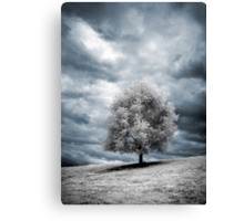 Glowing Tree Canvas Print