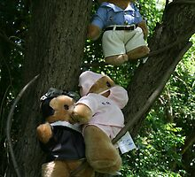 NEWS-FLASH: Local rescues care-flight crew! All bears safe!  by MrJoop