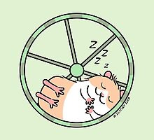 Hamster Sleeping in Exercise Wheel by zoel