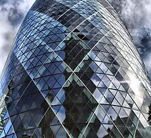 The gherkin by Roxy J
