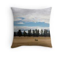 Farming NZ Throw Pillow