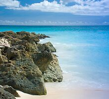 Paradise Rocks by WillOakley