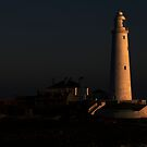 St Mary&#x27;s Lighthouse by Alan Rodmell