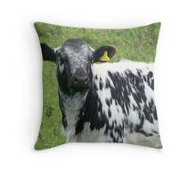 Baby cow.  Throw Pillow