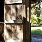The Old Barn Door by BBatten