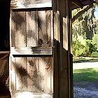 The Old Barn Door by BBatten