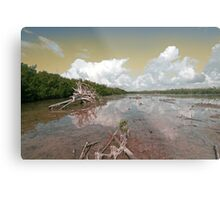 Low Tide At The Key Metal Print