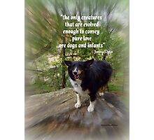 Kali at Oak Creek Photographic Print
