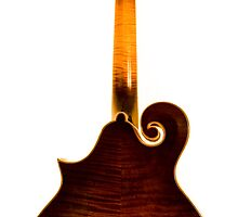 The Loar According to Derrington - The Fine Lines by Paul Thompson