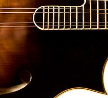 The Loar According to Derrington - The Point by Paul Thompson