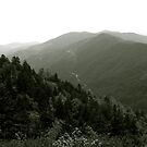 Mountain Pass by Anthony Pierce