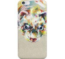 Ferret III iPhone Case/Skin