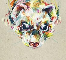 Ferret III by NuanceCurieuse