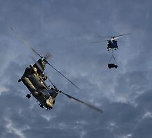 Chinooks - Evening Lift by © Steve H Clark Photography